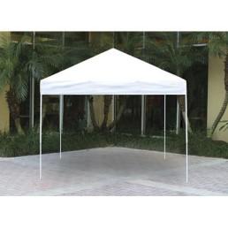 10' x 10' canopy
