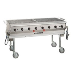 2x5 deluxe propane grill