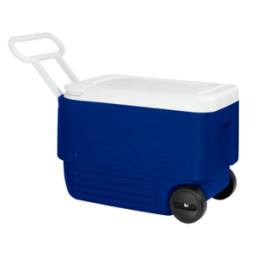 60qt ice chest