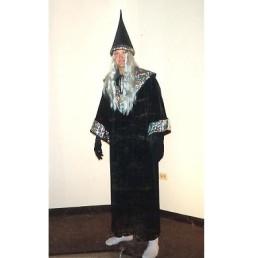 wizard - sorcerer