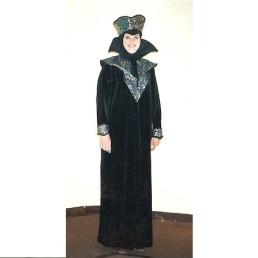 wizard - sorceress