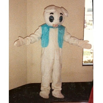 bunny rabbit costume blue