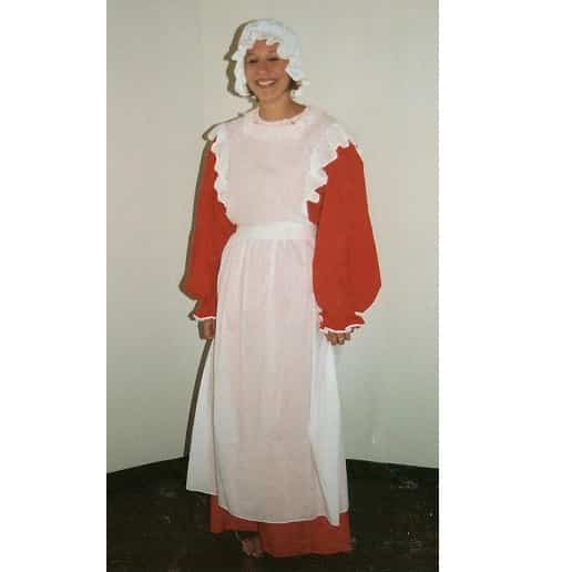 mrs santa costume